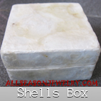 sea shell jewelry box bali